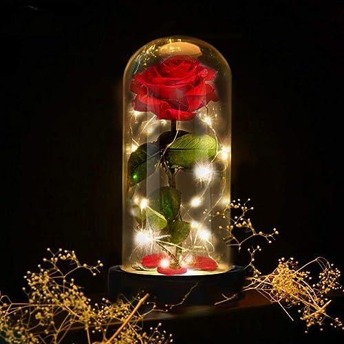 E-MANIS Kit di Rose,La Bella e La Bestia Rose Incantate,Elegante Cupola di Vetro con Base Pino Luci LED,Beauty And Beast Regali Magici Decorazioni per San Valentino Anniversario di Matrimonio Vacanza