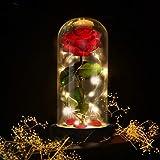 E-MANIS Kit de Rosas,La Bella y La Bestia Rosa Encantada,Elegante Cúpula de Cristal con Base Pino Luces LED,Beauty and Regalo