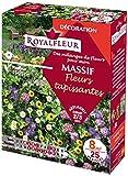 Royalfleur PFRE21443 Graines de Mélange de Fleurs mon Massif Fleur Tapissant 8 m²