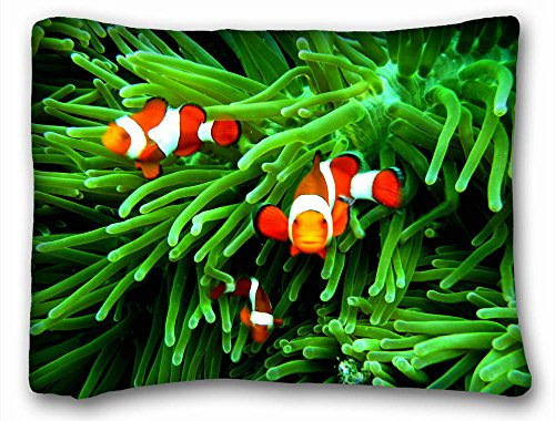 """Decorative Standard Pillow Case Animals Clownfish Family 20""""*26"""" One Side"""