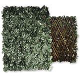 Wolfpack Jalousie extensible avec feuilles Haie artificielle 1x2m