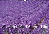 Lavendel - Ein Traum in Lila (Wandkalender 2016 DIN A3 quer): Genießen Sie ein ganzes Jahr blühenden Lavendel und erfreuen Sie sich an der intensiven ... (Monatskalender, 14 Seiten) (CALVENDO Natur)