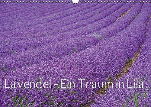Lavendel - Ein Traum in Lila (Wandkalender 2016 DIN A3 quer): Genießen Sie ein ganzes Jahr blühenden Lavendel und erfreuen Sie sich an der intensiven ... (Monatskalender, 14 Seiten) (CALVENDO Natur) - Blühende Kräuter Duft