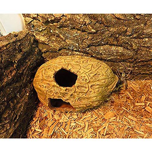 ETbotu Cachettes pour reptiles et amphibiens
