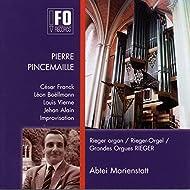 30 Jahre Rieger-Orgel Abtei Marienstatt