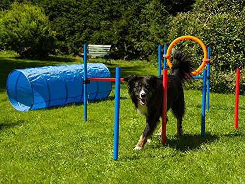 Dog Agility Set Profi