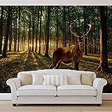 Hirsch Wald Bäume Natur- Forwall - Fototapete - Tapete - Fotomural - Mural Wandbild - (3194WM) - XXL - 312cm x 219cm - VLIES (EasyInstall) - 3 Pieces