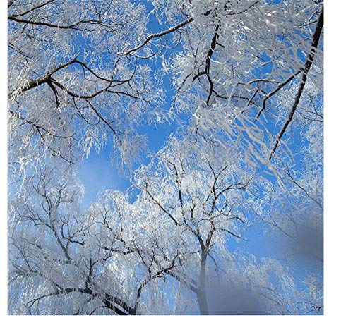 YUKANGI 3D-Decken-Tapete, Winter, Himmel, Eisbaum, Schneeflocken, Zenith Wandbild, Heimdekoration (Decken Tisch Schneeflocke)