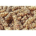Kopi-Luwak-Naturale-Macinato-fino-Il-caff-pi-raro-del-mondo