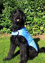 Prestige - Manteau rafraichissant pour chien - Violet - Taille XL