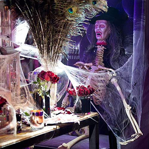 solawill Halloween Spinnennetz , 2 pcs Spinnweben mit 10 Spinnen Halloween Decoration  Dehnbare Spinngewebe für Halloween Decoration Party Karneval Deko - 7