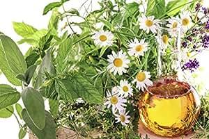 Schisandra Berry perfusion huile Schisandra chinensis 50ml