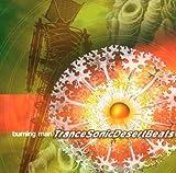 Burning Man Trance Sonic Deser