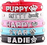 Swanky Paws Personalised Pet Dog Cat Collar Rhinestone Name Bling Charms PU Leather UK-Black-Small (1.5 x 30 cm)