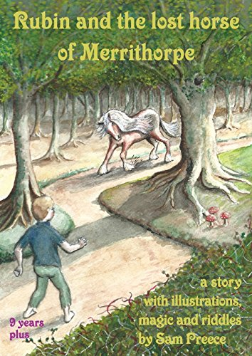 Rubin and the lost horse of Merrithorpe: A story with illustrations, magic and riddles