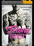 Felony Ever After (English Edition)