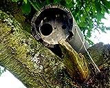 Schwegler Naturschutzprodukt Steinkauzröhre Typ 20B mit Marderschutz und Belüftung