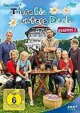 Tiere bis unters Dach - Staffel 3 [2 DVDs]