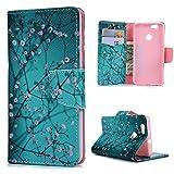 Huawei NOVA Hülle,KASOS Huawei NOVA Case Bunt Gemalt Book Type PU Leder +TPU Innere Tasche Brieftasche Etui und Magnetverschluss Ledertasche Schutzhülle Cover Handyhülle,Kapok