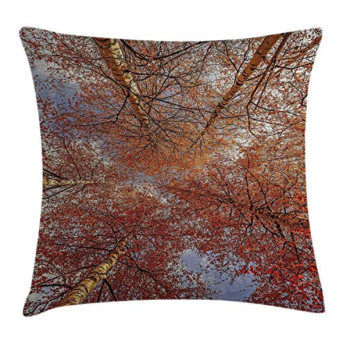 Forest Home Decor Throw Pillow Cushion Cover, Fall Birch Trees Rural Oak in Woodland Peace Environment Park Foliage Picture, Decorative Square Accent Pillow Case, 18 X 18 inches, Orange