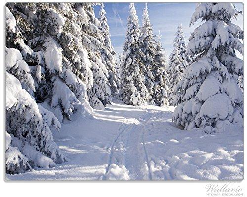 Wallario Stilvolle Glasunterlage / Schneidebrett aus Glas, Wanderweg im Schnee, Größe 30 x 40 cm, kratzfest, aus Sicherheitsglas