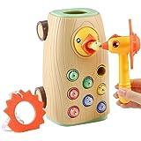 BBLIKE Jouet Jeux Montessori Bebe Jouet educatif Enfant 2 3 Ans pour garçons et Filles, iseau à Nourrir avec des Insectes Jou