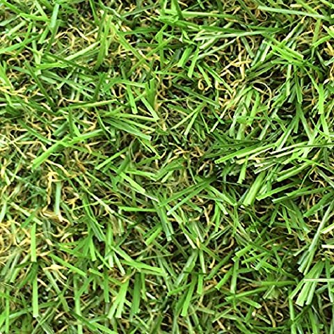4m x 2.5m Zaragoza 30mm Pile Height Artificial Grass | Natural & Realistic Looking Astro Garden Lawn | 8 ft 2 Inch x 12 ft 10 Inch | 250cm x 400cm | 98 x 157 Inches | High Density Fake