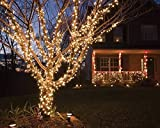 Proxima Direct 100/200/300/400/500 LED String Fairy Lights for Christmas Tree Party Wedding Events Garden (8 Lighting Modes, memory function) - Top Quality (Warm White, 100 LED) Bild 6