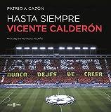 Hasta siempre, Vicente Calderón (OBRAS DIVERSAS)