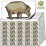 480 Pegatinas - jabalí (38x21mm) Etiquetas de animales autoadhesivas de alta calidad de Zooify.