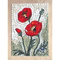 Kit Mosaico Fiori di campo, Papaveri 32x23cm - Quadro fai da te hobby creativo - Tessere mosaico in marmo e Vetri di Murano - Idea regalo originale Natale/Compleanno / Anniversario