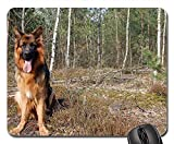 Gaming-Mauspads, Mauspad, Dog Spring Forest Spacer Schäferhund