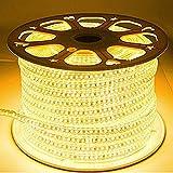 LED Strip Light Waterproof Roll 20 Meter (120 led/Mtr) Warm White