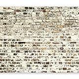 murando - Fototapete 400x280 cm - Vlies Tapete - Moderne Wanddeko - Design Tapete - Wandtapete - Wand Dekoration - Ziegel Mauer Beton Textur f-B-0019-a-a