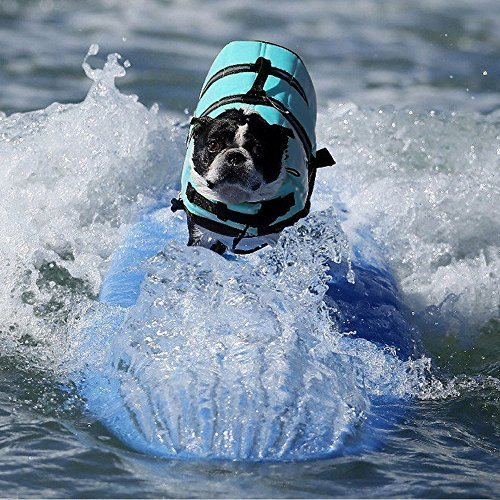 pet-saver-life-jacket-pet-dogs-swimming-life-jacketsvioletorangeblue-skyblue-x-small-by-toontor
