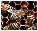 Mousepad bedruckt mit Biene