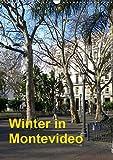 Winter in Montevideo (Wandkalender 2019 DIN A3 hoch) -