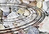 Tischsets abwaschbar Art by Nature von ARTIPICS 4er-Set Platzsets Kunststoff 42x30 cm