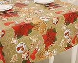 Vinylla - Mantel de Navidad de vinilo, diseño de flor de pascua, hule - Large(240x140cm)