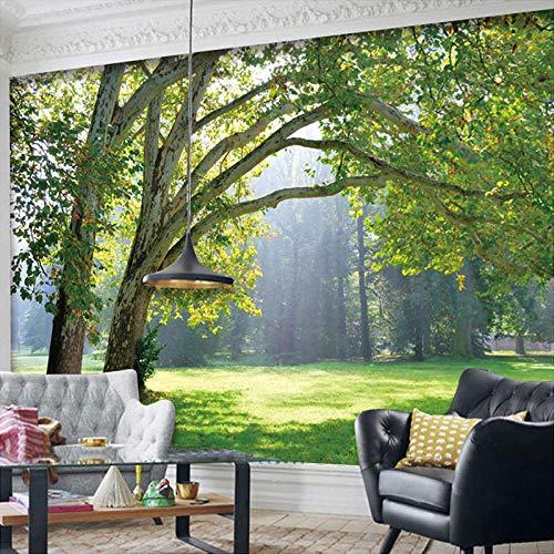 WZJam 3D Wandbilder Tapete Landschaft Für Wohnzimmer Wald Landschaft Tapeten Natürliche Wandbilder Arbeitszimmer Tv Hintergrund Wallcoverings @ 300X210 cm (Natürliche Tapeten)