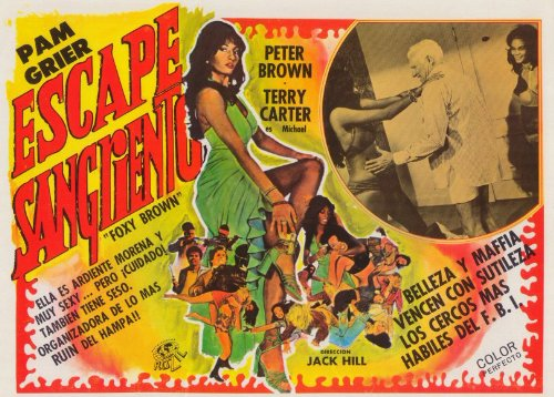 Foxy Brown Poster Movie Spanish 11 x 17 In - 28cm x 44cm Pam Grier Terry Carter Antonio Fargas Kathryn Loder Peter Brown Sid Haig by Pop Culture Graphics