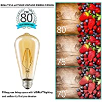 LED Vintage Light Bulbs 4W ST64 Filament Edison Lamps E27 2700K Not Dimmable from MS Electronic Co., Ltd.
