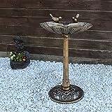 Vogeltränke VGT4 Vogelbad Vogel Tränke Bad mit zwei Vögeln auf der Wasserschale