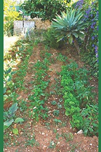 il mio giardino con orto e i suoi visitatori: guida ragionata per curare il giardino e l'orto e riconoscere gli animali e le piante presenti negli ambienti domestici