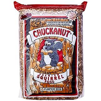 chuckanut products 00002 10-pound premium squirrel diet Chuckanut Products 00002 10-Pound Premium Squirrel Diet 61c9VklXA4L