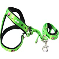 Oz International 0.75 Inch Wide Thick Padded Adjustable Dog Harness and Leash Set for Medium Dogs in Printed Nylon Tape…