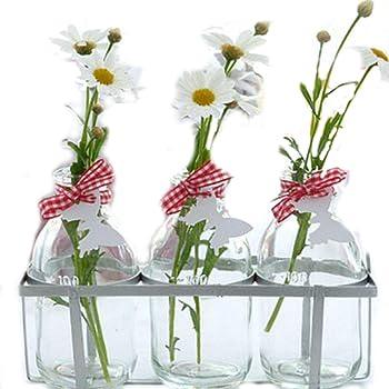 Vintage Style Mini Glass Vase Bottles Amazon Kitchen Home
