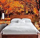 Fototapete Wand Baum im Herbst | Verschiedene Maße 400x300 cm | Dekor Esszimmer, Wohnzimmer, Zimmer Landschaftsmotive Urbes, Natur, Kunst Multicolor Elegantes Design