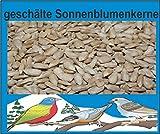 Sonnenblumenkerne geschält 25 kg, Vogelfutter, Winterfutter, Schalenlos