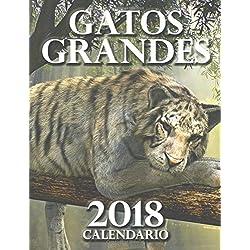 Gatos grandes 2018 calendario (Edición España)